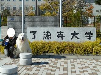 2010_11_27_05.jpg