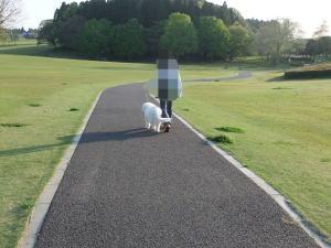 2010_4_29_4.jpg