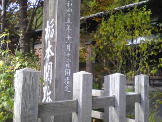 20091022018.jpg