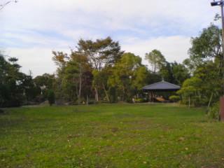 20091103006.jpg