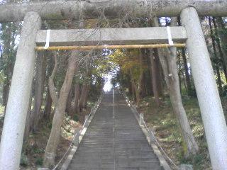 20100401002.jpg
