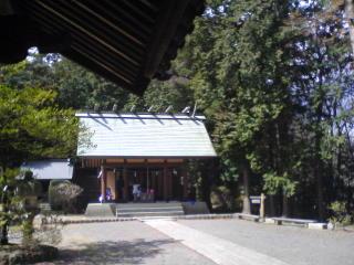 20100401006.jpg