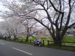 20100404009.jpg