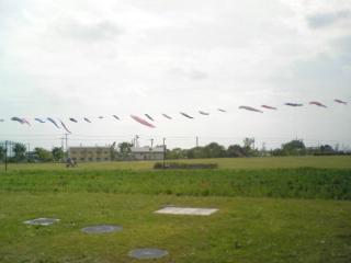20110509003.jpg