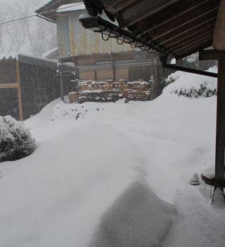 0116雪朝