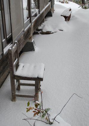 0116雪