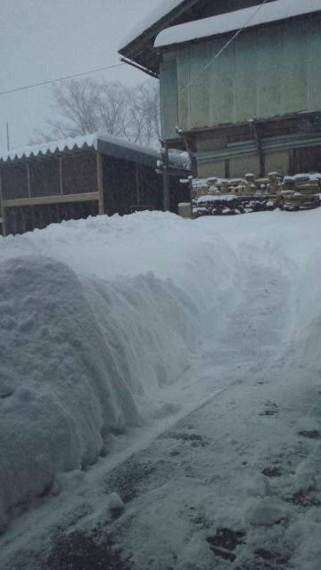 雪116夕方jpg