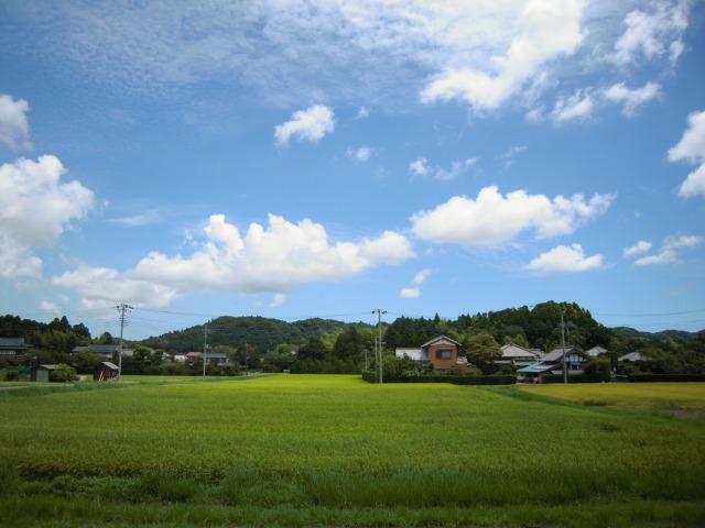 2010/08/08 新田野駅2(待合室より)