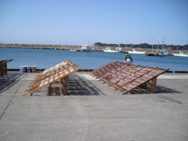 勝浦漁港?