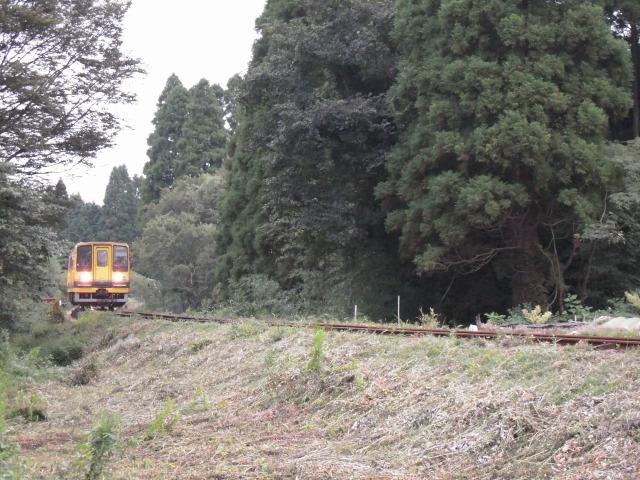 鉄橋を渡る黄色い列車
