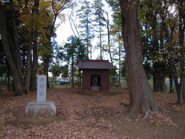 天神公園の神社