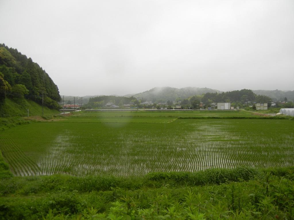 新田野駅(2011/5/28)