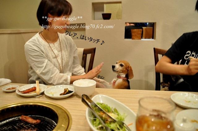 10_20101108223339.jpg