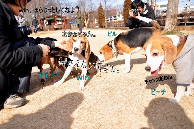 10_20110125162040.jpg