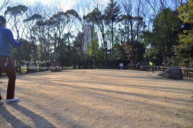 11-1_20110104232736.jpg