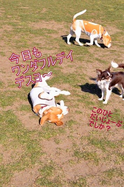 11-1_20110203232719.jpg