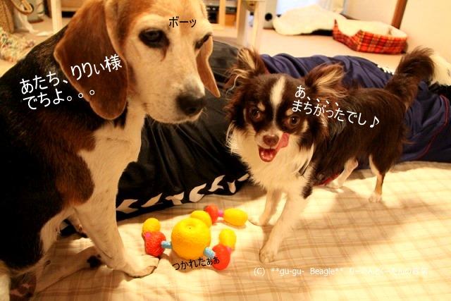 11_20100526163621.jpg