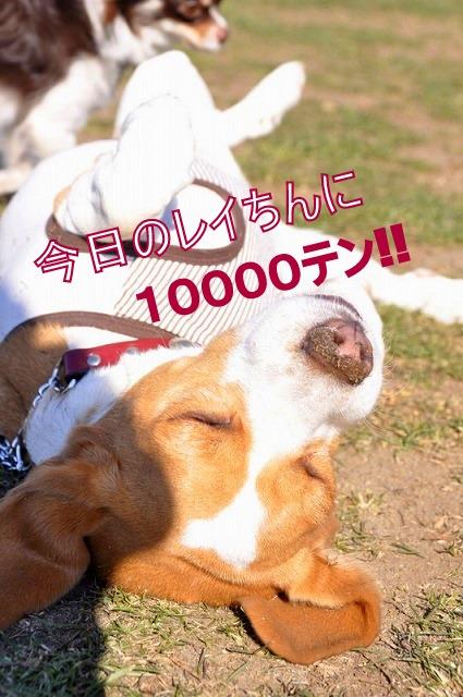11_20110203232719.jpg