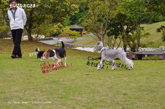 12_20100514163952.jpg
