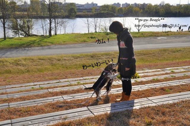 12_20101214171627.jpg