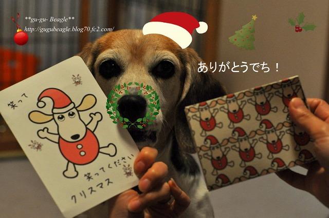 12_20101217100205.jpg