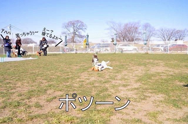 13_20110203233026.jpg
