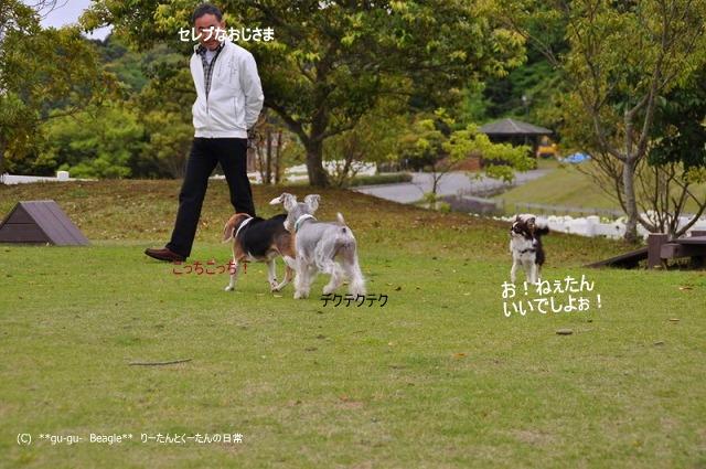 14_20100514164142.jpg