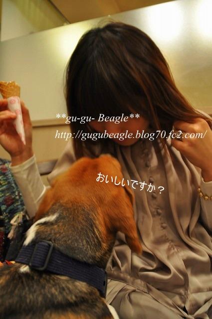 14_20101108224042.jpg