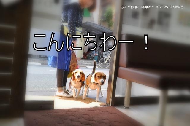 1_20100516214603.jpg