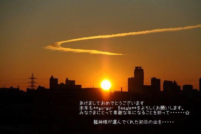 1_20110103000817.jpg