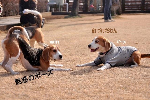 1_20110125160506.jpg