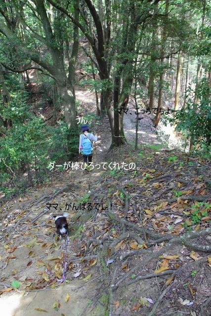 2-1_20100508224128.jpg