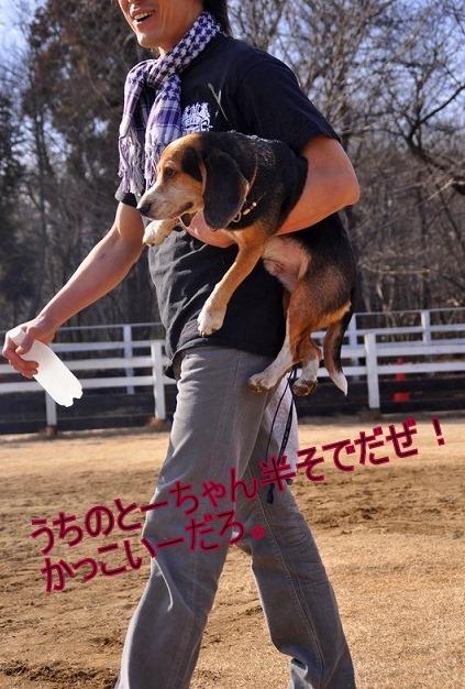 21_20110126192053.jpg
