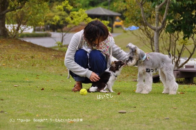 22_20100514164944.jpg