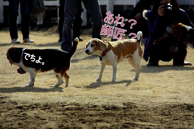 23_20110126192052.jpg