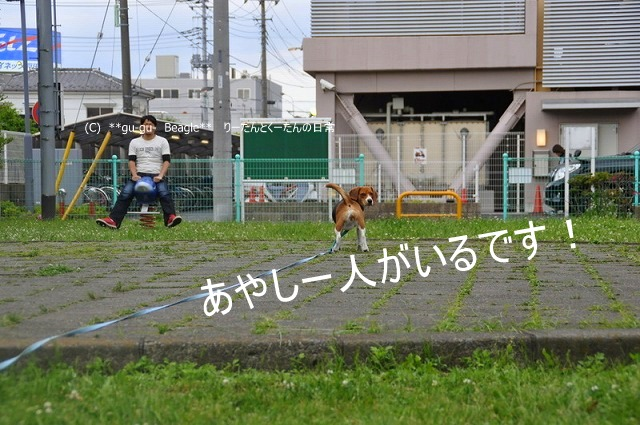 24_20100516221410.jpg
