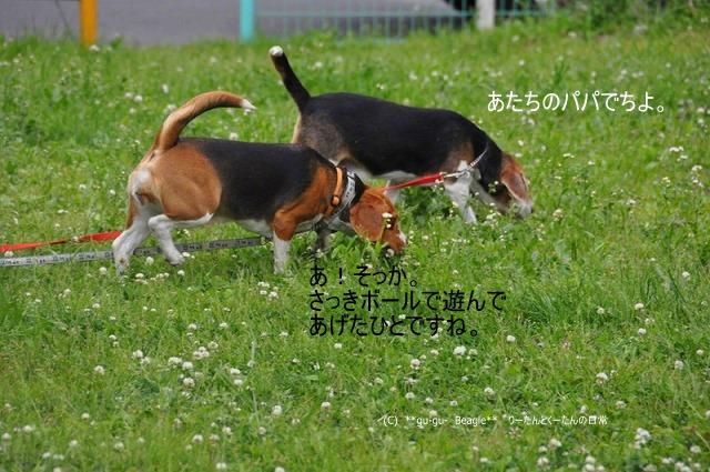 25_20100516221540.jpg