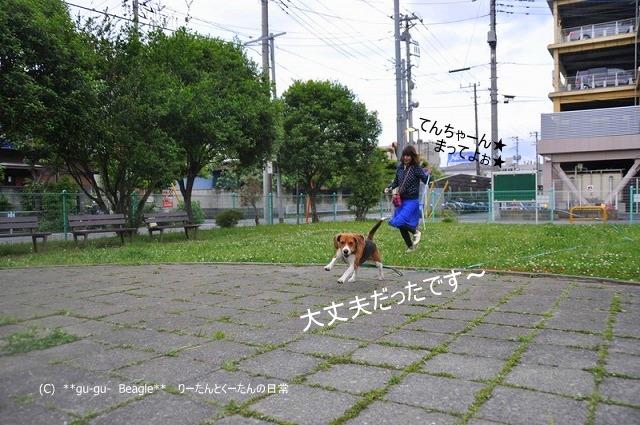 27_20100516221645.jpg