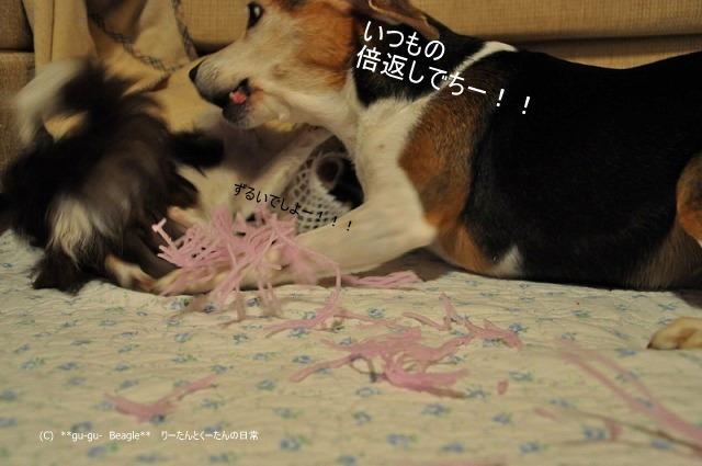 29_20100603132322.jpg