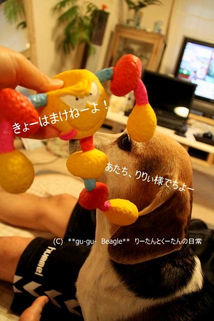 2_20100526160632.jpg