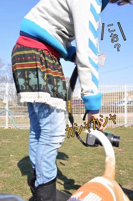 30_20110203233920.jpg