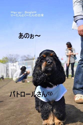 3_20100420220240.jpg
