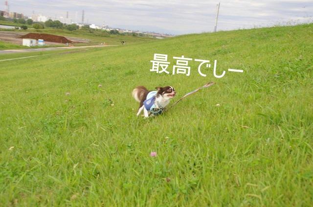 3_20100930112717.jpg