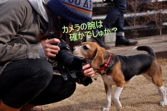 3_20110127214131.jpg