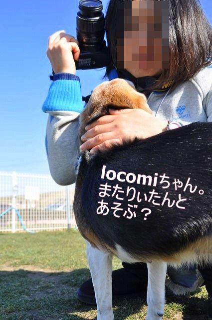 4_20110203231940.jpg