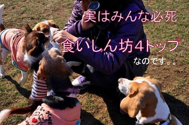 50_20110123235148.jpg