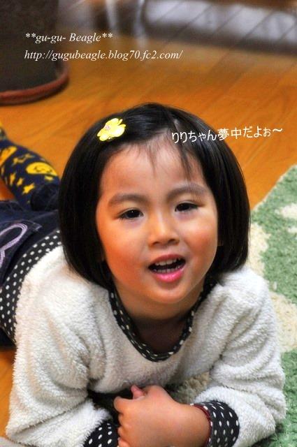 5_20101216085838.jpg