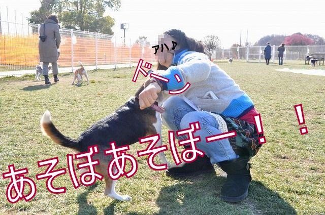 5_20110203231940.jpg