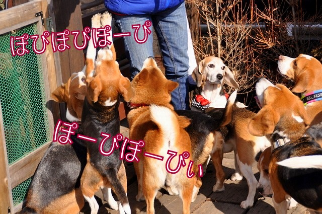 7_20110127214131.jpg