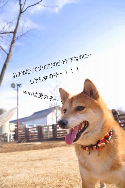 8_20110125162040.jpg